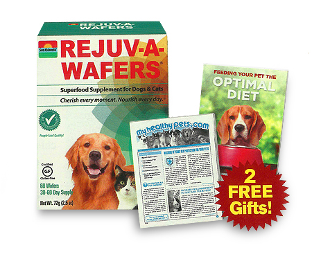 Rejuv-A-Wafers - Good Deal PGD1