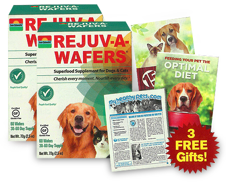 Rejuv-A-Wafers - Best Deal PBD1